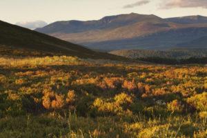 Lochnagar, Cairngorms